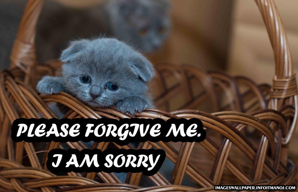 sorry images for bestfriend,girlfriend,boyfriend,lover