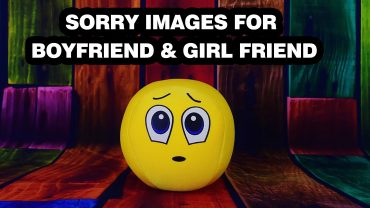 sorry images for bestfriend,girlfriend,boyfriend,lover